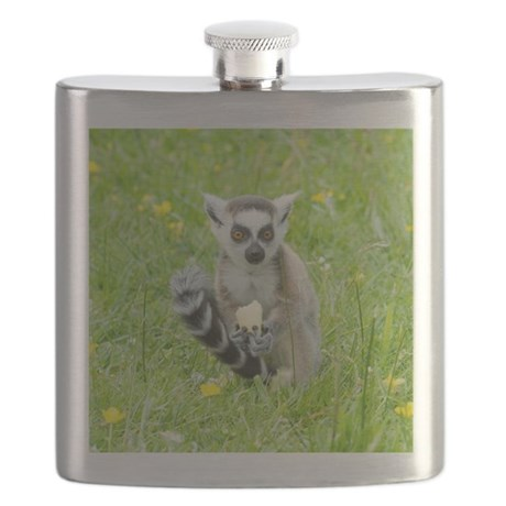 Ring-tailed Lemur Eating Fruit Flask