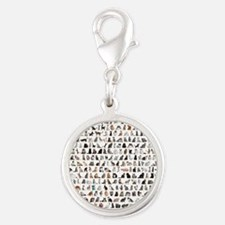 Large group of 471 cats breeds Silver Round Charm