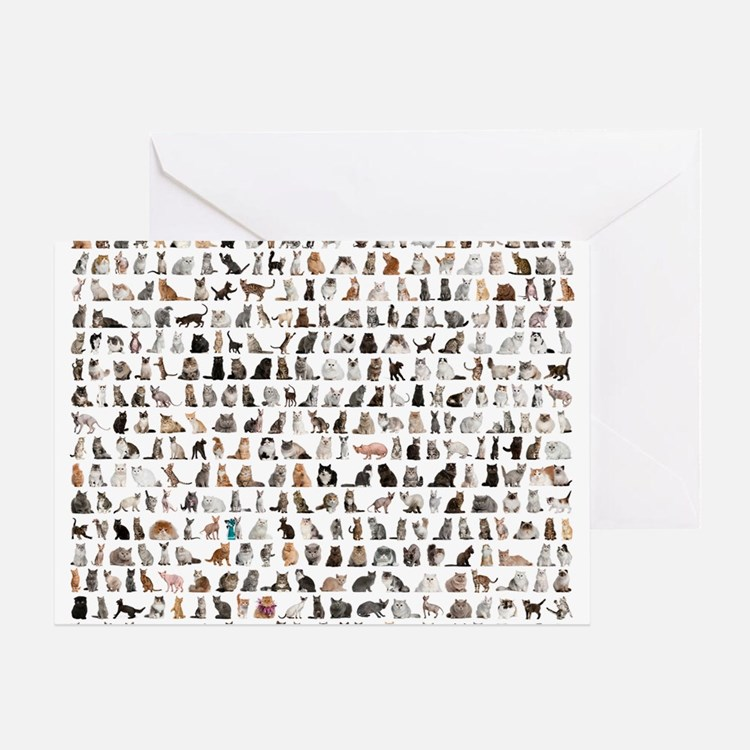 Large group of 471 cats breeds in fr Greeting Card