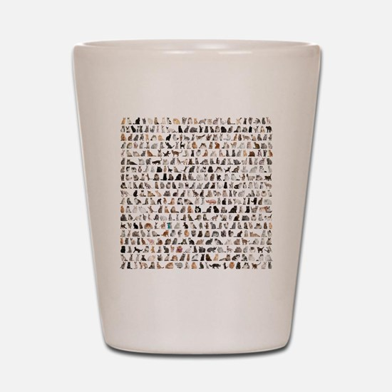 Large group of 471 cats breeds in front Shot Glass
