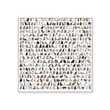 "Large group of 471 cats bre Square Sticker 3"" x 3"""