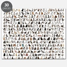 Large group of 471 cats breeds in front of  Puzzle