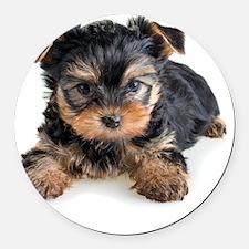 Yorkshire Terrier Puppy Round Car Magnet
