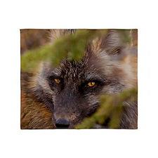 Penetrating gaze of an alert red fox Throw Blanket