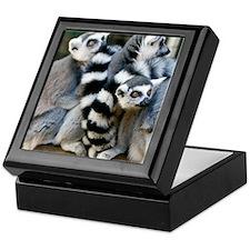 Ring-Tailed Lemur Keepsake Box