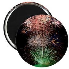 Beautiful Fireworks Magnet