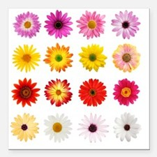 "The Perfect Daisy Collec Square Car Magnet 3"" x 3"""