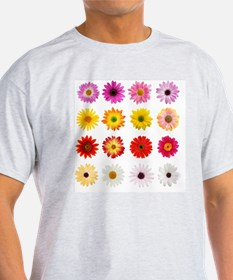The Perfect Daisy Collection T-Shirt