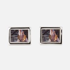 dl_3_5_area_rug_833_H_F Cufflinks