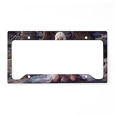 dl_3_5_area_rug_833_H_F License Plate Holder