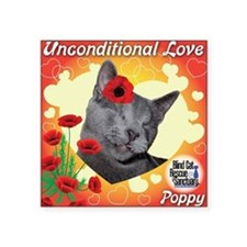 "Poppy Unconditional Love Square Sticker 3"" x 3"""