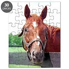 CHARISMATIC Puzzle