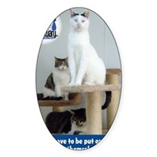 Cats on Pedestals Decal