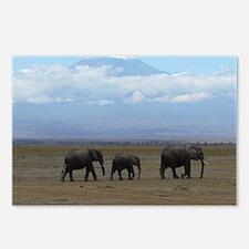Elephants with Kilimanjar Postcards (Package of 8)