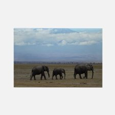 Elephants with Kilimanjaro Rectangle Magnet