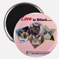 Love is Blind in Pink Magnet