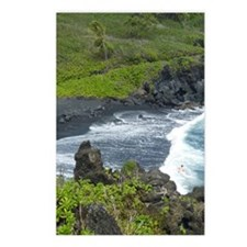 BLKSds661x986 Postcards (Package of 8)