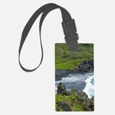 BLKSds661x986 Luggage Tag