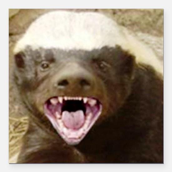 "honey badger Square Car Magnet 3"" x 3"""