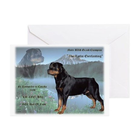 Levi Greeting Cards (Pk of 10)