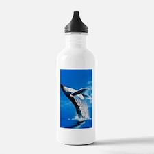 Humpback whale Water Bottle