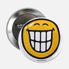 "delight smiley 2.25"" Button"