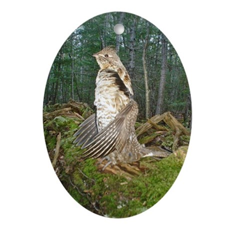 Drumming grouse Oval Ornament