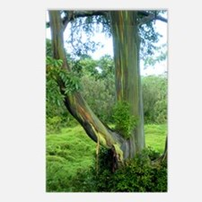 Tree2 Postcards (Package of 8)