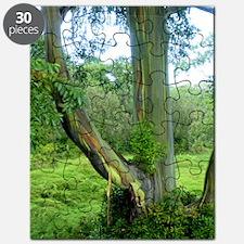 Tree2 Puzzle