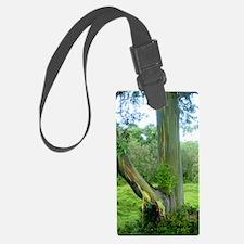 Tree2 Luggage Tag