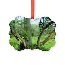 Tree18 Ornament
