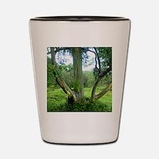Tree69x70Sf Shot Glass