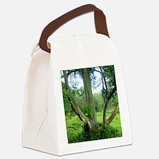 Tree69x70Sf Canvas Lunch Bag