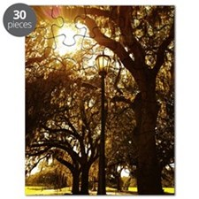 Trees and street light Puzzle