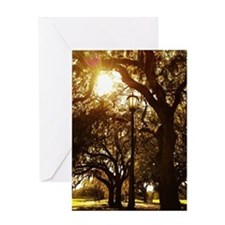 Trees and street light Greeting Card