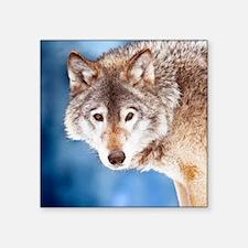 """Beautiful Wolf Square Sticker 3"""" x 3"""""""