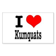I Heart (Love) Kumquats Rectangle Decal