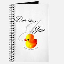 Due in June Journal