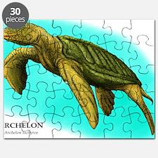 Archelon Puzzle