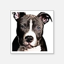"Cartoon Pit Pup Square Sticker 3"" x 3"""