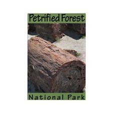 Petrified Forest NP Rectangle Magnet (100 pack)