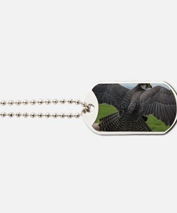 Peregrine Falcon Dog Tags