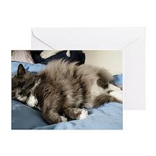 Reclining Cat  Greeting Card