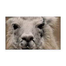 (13) Llama 8716 Rectangle Car Magnet