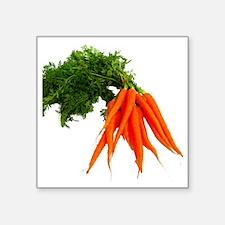 """carrots Square Sticker 3"""" x 3"""""""