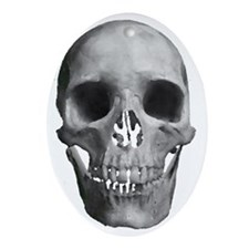 The Human SKull Oval Ornament
