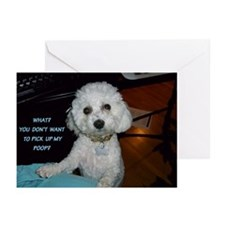 SOPHIE POOPSTER GREETING CARDS (Pk of 10)