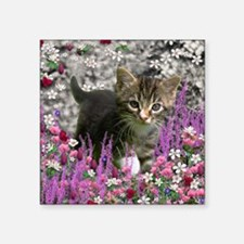 "Emma Tabby Kitten in Flower Square Sticker 3"" x 3"""