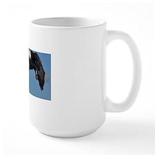 662_h_f  pic frame (1)  3 Mug