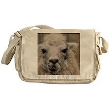 (4) Llama 8716 Messenger Bag